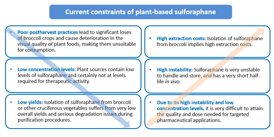 Current constraints of plant-based sulforaphane